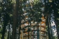 stezka_korunami_stromu (1)